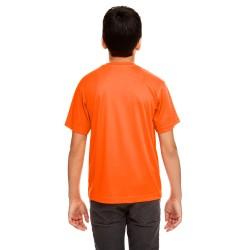 Comfort Colors C4017 4.8 oz. Ringspun Garment-Dyed T-Shirt